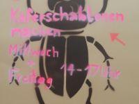 käfer_11