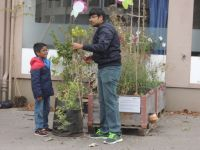 Bepflanzung_11_2015_15