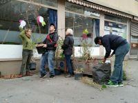 Bepflanzung_11_2015_23