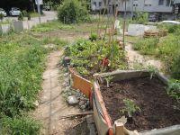 Garten_fuer_Alle_12