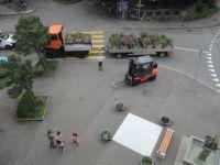 Projekt_Wunderkiste_Vorplatzbepflanzung_11