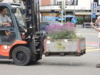 Projekt_Wunderkiste_Vorplatzbepflanzung_14