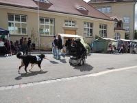 2_Begegnungsfest_2012_61
